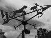 This weather vane all started by taking pictures of owners dog!